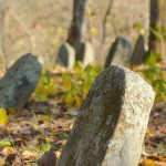Višķu ebreju kapi